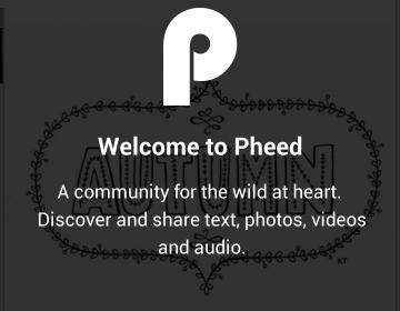 pheed company