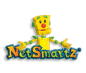 links netsmartz